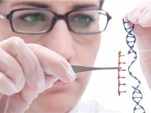 Một số bệnh di truyền thường gặp ở người