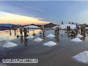 Muối Bà Rịa - thứ không thể thiếu trong nước mắm Phú Quốc