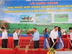 Khai trương khu phức hợp nông nghiệp CNC chăn nuôi bò và chế biến các sản phẩm từ sữa