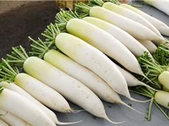 Công dụng tuyệt vời của củ cải trắng