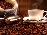 Tính chất đặc thù về chất lượng của cà phê Buôn Ma Thuột