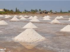 Muối dùng để sản xuất nước mắm Phan Thiết đặc biệt như thế nào?
