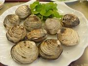 Ảnh hiểu của điều kiện tự nhiên tới chất lượng ngán Quảng Ninh
