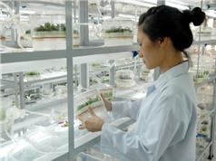Công nghệ sinh học ưu tiên nhóm sản phẩm nông nghiệp, y, dược