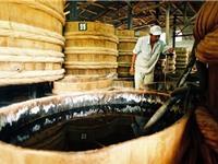 Quá trình tự chín của cá ướp muối khi sản xuất nước mắm