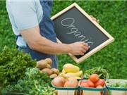 Một số doanh nghiệp đầu tư vào nông nghiệp hữu cơ