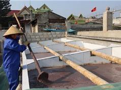 Yêu cầu kỹ thuật của khu vực chế biến mắm tôm Hậu Lộc