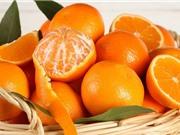 Cách phân biệt cam sành Hà Giang và các loại cam khác