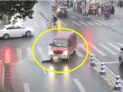 """CLIP HOT NHẤT TRONG NGÀY: Xe khách cán ngang người qua đường, chó hoang """"mất ăn"""" trước cá sấu"""