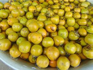 Công đoạn thu hoạch và bảo quản hồng không hạt Bảo Lâm