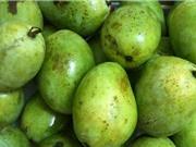 Tính chất đặc thù của quả xoài Yên Châu