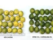 Chế phẩm tạo màng bảo quản hoa quả: Lợi nhuận cao nhưng khó nhân rộng
