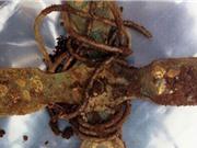 Nhận 2,5 triệu USD tiền thưởng khi phát hiện kho báu Viking