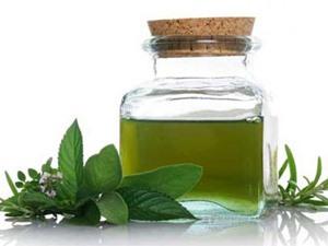 10 công dụng bất ngờ của tinh dầu trà xanh