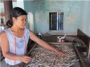 Quảng Ninh - xứ sở của hải sản mang chỉ dẫn địa lý