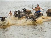 """Việt Nam """"siêu độc, lạ"""" qua ống kính của nhiếp ảnh gia người Anh"""