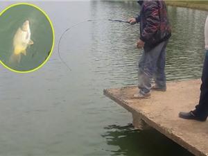 """Clip: Câu được cá chép """"khủng"""" trên Hồ Xuân Hương, Đà Lạt"""