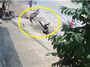 """CLIP HOT NHẤT TRONG NGÀY: Ngã """"cắm đầu"""" vì tránh người qua đường, khỉ đầu chó hù dọa báo"""