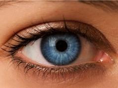 Clip: Bài tập giúp mắt sáng, khỏe giành cho người dùng máy tính nhiều