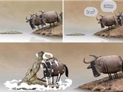 Clip hài hước: Chết thảm vì tranh cãi với kẻ ngu ngốc