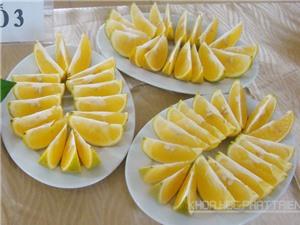 Điều kiện khí hậu thích hợp để trồng cam Cao Phong