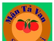Người dân Si Ma Cai được sử dụng nhãn hiệu tập thể cho mận Tả Van