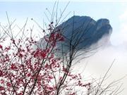 Núi Hàm Rồng - điểm đến hấp dẫn bậc nhất Sa Pa