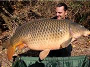 Clip: Cần thủ Mỹ câu được cá chép nặng gần 25kg