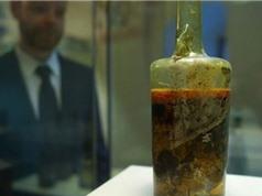 Bình rượu cổ hơn 1.600 năm tuổi gây tranh cãi cho giới khoa học