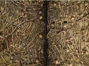 Phát hiện gây chấn động từ ngôi mộ chiến binh thế kỷ 17 ở Đức