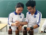 Học sinh chế thuốc đuổi muỗi từ lá cây