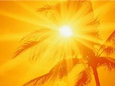 Sự sống trên Trái Đất từng hứng chịu mức nhiệt 75 độ C
