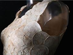 Vải làm từ lá dứa, nấm có thể thống trị thời trang tương lai