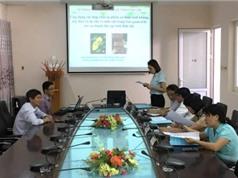 Ứng dụng khoa học công nghệ trong bảo quản thực phẩm