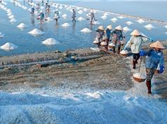 """Quy trình làm muối Tuyết Diêm """"ngon nhất miền Trung"""""""