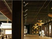 Sàn nhà hót như chim giúp xua đuổi kẻ trộm ở Nhật