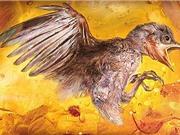 Phát hiện gây kinh ngạc về xác con chim 100 triệu năm tuổi trong hổ phách