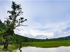 """Ngắm """"mắt rừng"""" của mảnh đất địa đầu Tổ quốc"""