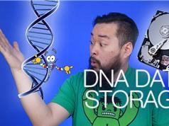 Microsoft sẽ lưu trữ dữ liệu bằng DNA vào năm 2020