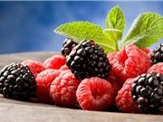 Tác dụng chữa bệnh của các loại quả mọng