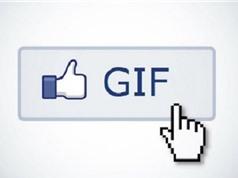 Hướng dẫn bình luận bằng ảnh GIF trên Facebook