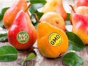 Sự thực về thực phẩm biến đổi gen