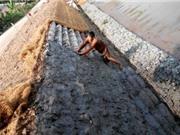 Thử nghiệm giải pháp kết cấu thảm cát bảo vệ bờ sông