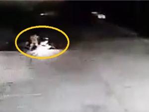 """Clip: Tránh đứa trẻ sang đường """"hồn nhiên"""", xe máy gặp tai nạn"""