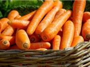 Thực hư tác dụng bổ mắt của cà rốt