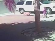 Clip: Chó hoang tấn công đứa bé và cái kết bất ngờ