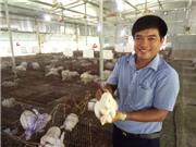 Bí quyết nuôi thỏ giữa lòng thành phố, vô hại với môi trường