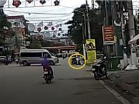 CLIP HOT NGÀY 26/6: Ôtô du lịch gây tai nạn cho xe máy, hổ săn trộm bò