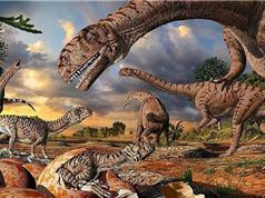 Núi lửa phun trào giúp khủng long thống trị Trái Đất