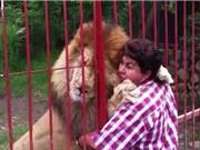 """Clip: """"Lạnh gáy"""" trước cảnh ôm hôn sư tử khổng lồ như bạn thân"""